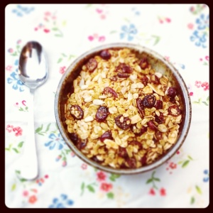 granola - copyright the simple stove 2016 - all rights reserved